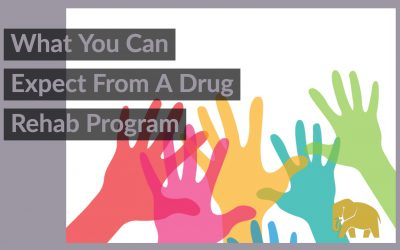 What You Can Expect From A Drug Rehab Program